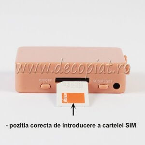 Cutiuta GSM